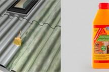 Sikagard® – 715W очиститель минеральных оснований от мхов, плесени и лишайников
